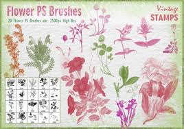 <b>Vintage Flower</b> Free Brushes - (1,903 Free Downloads)