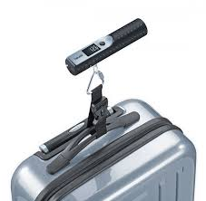 <b>Весы для багажа Beurer</b> LS 50 Travelmeister — купить безмен для ...
