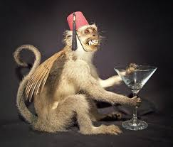Image result for fantasy taxidermy