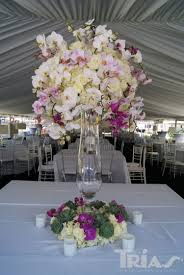 day orchid decor: dendrobium cymbidium and phalaenopsis are the three most common wedding orchids and all three are grown in an impressive array of colors