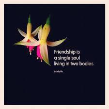 Cute Friendship Quotes Instagram. QuotesGram