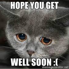 Hope you get well soon :( - Sad Cute Cat | Meme Generator via Relatably.com