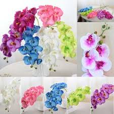 1pcs Single Branch 8 Phalaenopsis Artificial Flowers DIY ... - Vova
