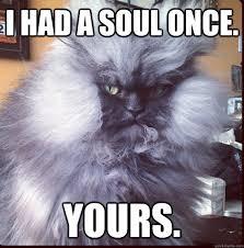 Evil Overlord Cat memes | quickmeme via Relatably.com