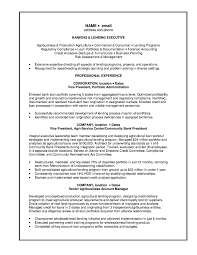 banking sample resumes template investment banking resume format