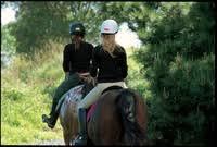 <b>Horse riding</b> at <b>Queen</b> Elizabeth Park | Greater Wellington Regional ...