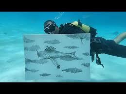 <b>Подводный мир</b>: рисование с натуры - YouTube
