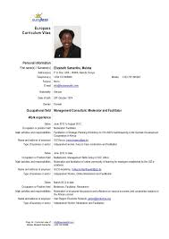cv in resume resume template web services resume word   cv in resume resume template web services resume word