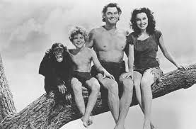 Image result for tarzan's cheetah