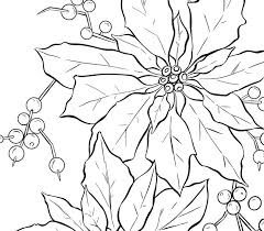 Poinsettia Line Art - Christmas | Line art, Realistic drawings ...