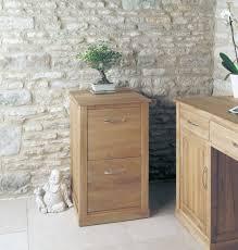 baumhaus mobel oak 2 drawer filing cabinet baumhaus mobel oak 2