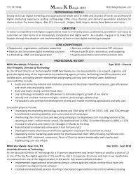 examples of marketing resumes  examples of marketing resumes    sample marketing resumes  seangarrette co