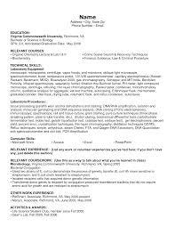 best resume computer skills cipanewsletter computer skills on resume examples resume computer skills resume