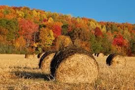autumn with hay bales autumn furniture