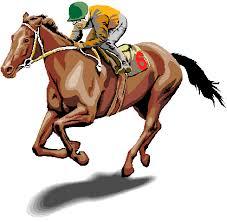 """Résultat de recherche d'images pour """"gif chance chevaux"""""""