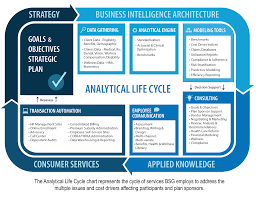 analytic approach process and tools the benefit services group analytical tools