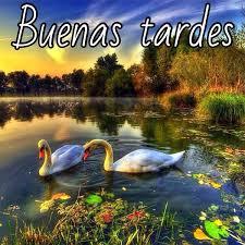 Buenos Días, Tardes, Noches SEPTIEMBRE 2014 Images?q=tbn:ANd9GcSGDuGRnhwBBMEjmOmanRFZhA_Lr7DzAZn-Gbf1KQSnimtbp-60