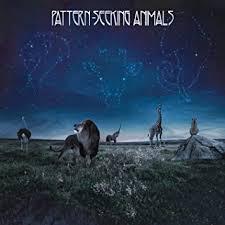 <b>Pattern</b>-<b>Seeking Animals</b> (Limited CD Digipak)