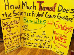How Much Turmoil Does The Science Project Cause Families ... via Relatably.com
