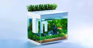 Xiaomi <b>Geometry AI smart</b> aquarium is crazy: You can feed the fish ...