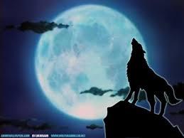 Resultado de imagen de luna llena Rachel hawthorne