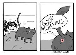 5 Hilarious <b>Cat Comics</b>