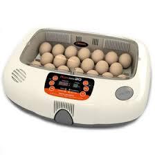 <b>Инкубатор Rcom 20 MAX</b>, 20 куринных яиц (3090925) - Купить по ...
