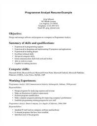 programmer analyst resume sample  programmer analyst resume example page 1 preview