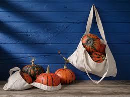 Vibrant Orange And Green Patterned <b>Japanese Pumpkin</b> Or ...