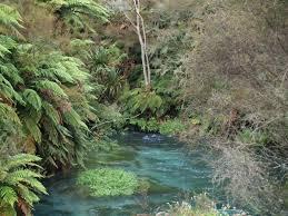 Río Waihou