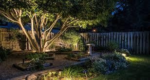 vista uplit tree and flowerbed copy area lighting flower bed