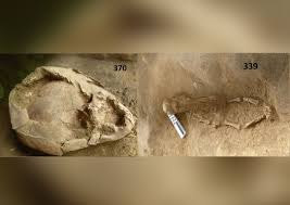 2 <b>Infants</b> Were Buried Wearing Helmets Made from Skulls. And ...