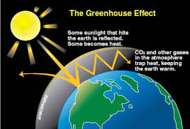 essay on green house effect and ozone depletion