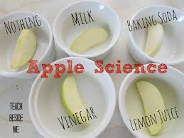 apple science experiment prevent browning apples turning and apple science experiment what keeps them from turning brown