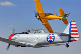 Image result for pics of warbirds to copy