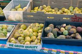 figs hillcrest farmers market i remember the first time i tried a fresh fig i was not into it it was from costco bought in bulk and lacking all flavor luckily i had the opportunity