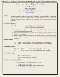 resume examples resume format write the best resume how resume examples resume form printable resume form gopitch co