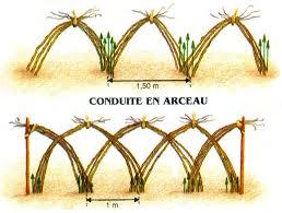 """Résultat de recherche d'images pour """"arceau en bambou"""""""