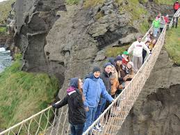 Image result for giant's causeway rope bridge