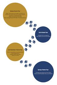 graduate school timeline industrial and organizational psychology graduate school timeline