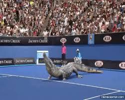 The Alternate Australian Open by mrnicjid - Meme Center via Relatably.com