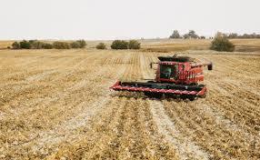The Post GMO Economy   Modern Farmer