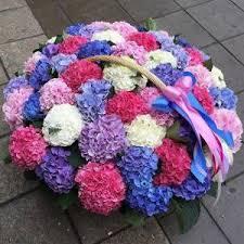 Купить <b>букет гортензий</b> в Москве, цена цветов от 990 руб