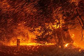 California Wildfires Signal the Arrival of a Planetary <b>Fire</b> Age   Live ...