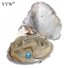 <b>20PCs</b> Lot 7-8mm Vacuum pack Oyster pearl Dyed Beads single ...