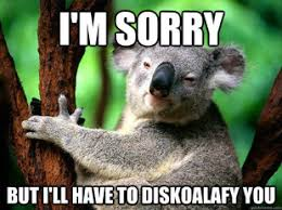 WHY DOES EVERYONE HAVE KOALA BEARS AS THEIR PROFILE PIC ... via Relatably.com