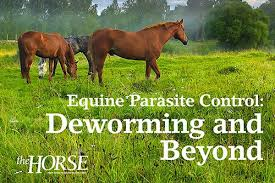 The <b>Horse</b> – Your Guide to Equine Health Care