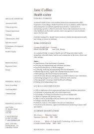 cv template cv examples and job description on pinterest health care resume templates care patient care assistant duties