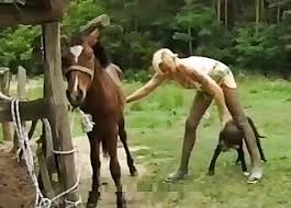 Blonde Porn Videos / Horse Sex Zoo / Most popular Page 1