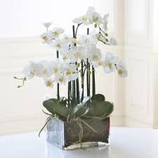 day orchid decor: phalaenopsis in square glass whp wh winward home silk flower arrangements